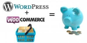 WooCommerce Plugin Minimum Viable Product using WordPress