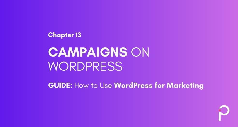 Marketing Campaigns using WordPress - WordPress Marketing Guide